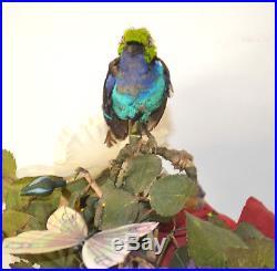 Rare Singing Bird Jardiniere Music Box Musical Automaton